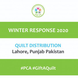 Quilts Distribution by PCA